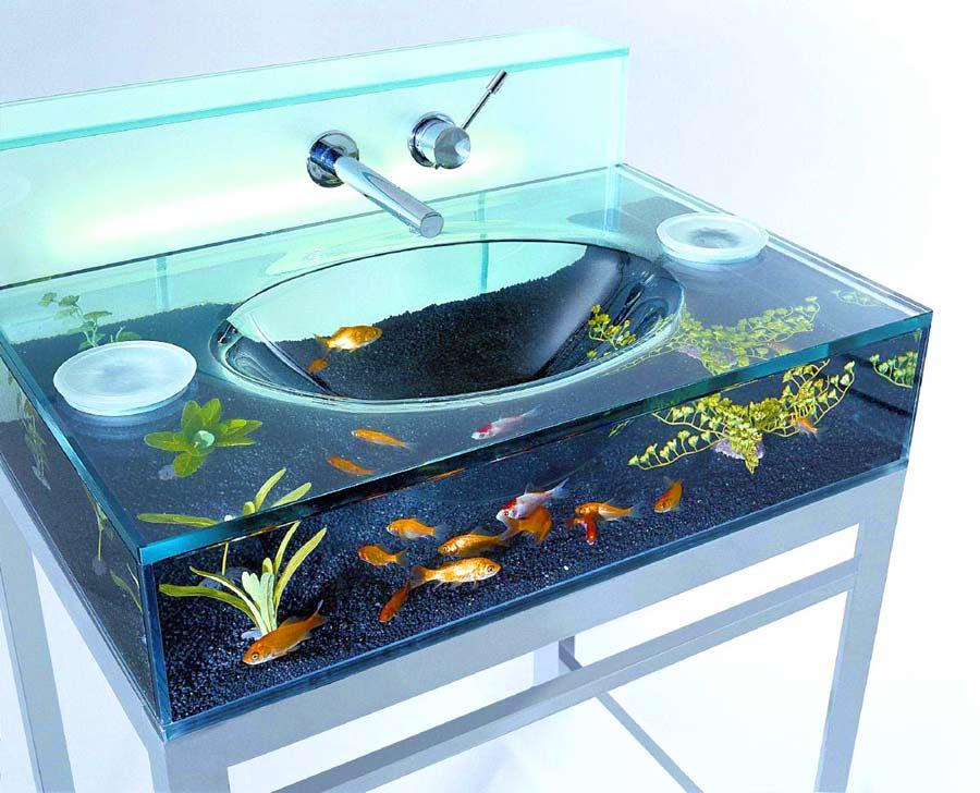 goldfish_sink6