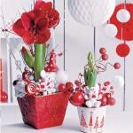 როგორ ვაქციოთ ოთახის ყვავილები საახალწლო დეკორად